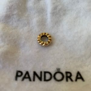Beautiful gold Pandora spacer